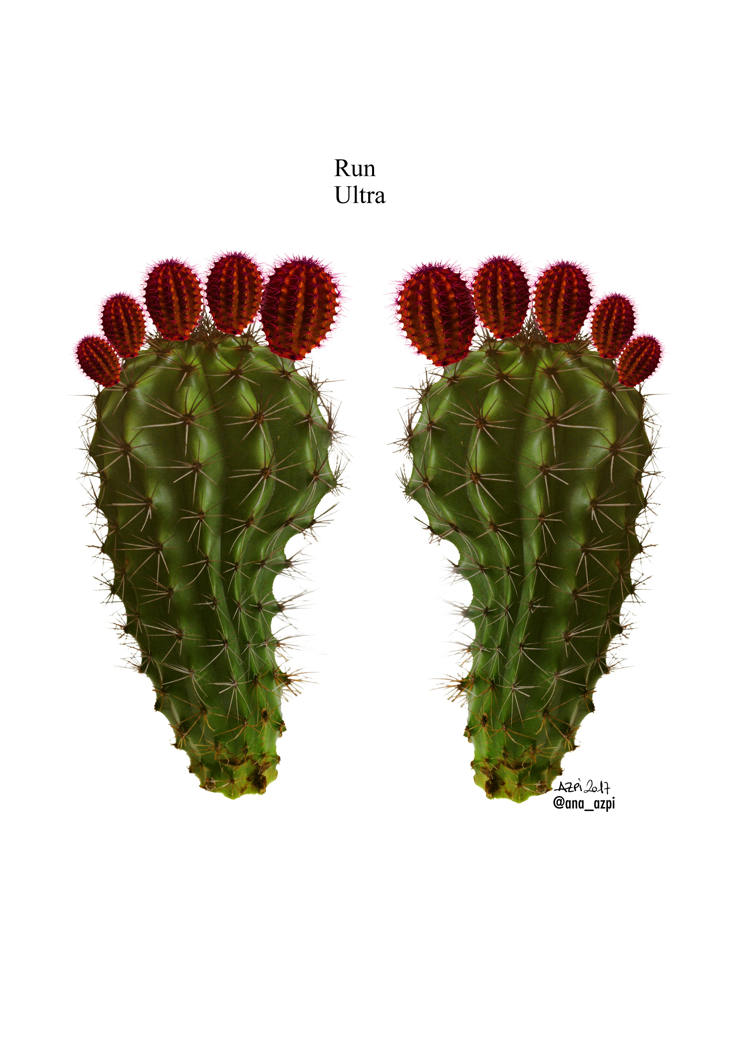 cactus_ultra_run
