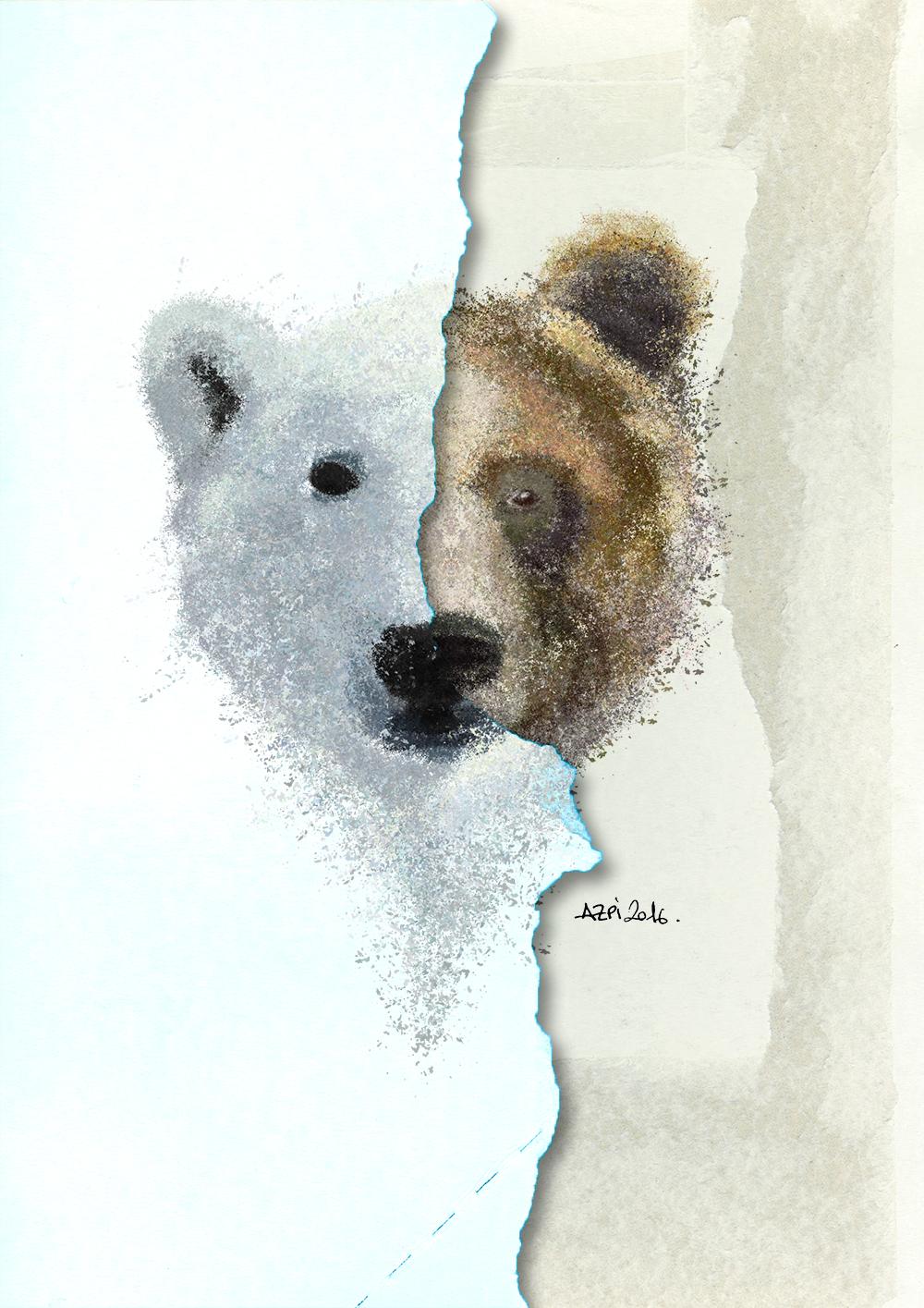 oso_polar web